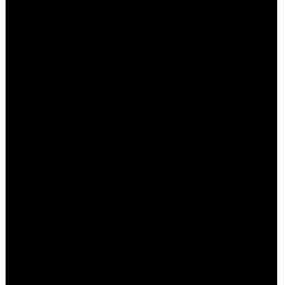 カールアイロン